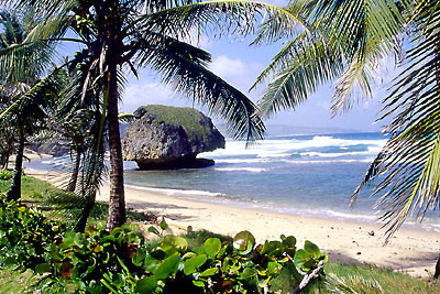 Bathsheba © 2004 Barbados Tourism Authority