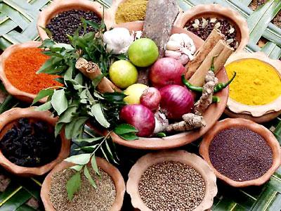 Reisen in Sri Lanka - Speisekarte - Curry, Jaggery und Arrak